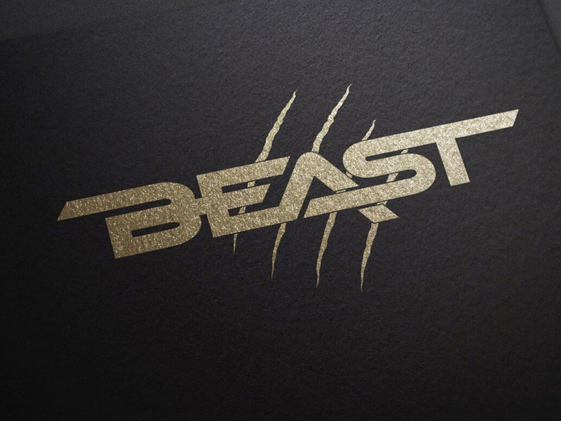 Beast - Fightwear & Fitness Equipment - Branding & Logo Design